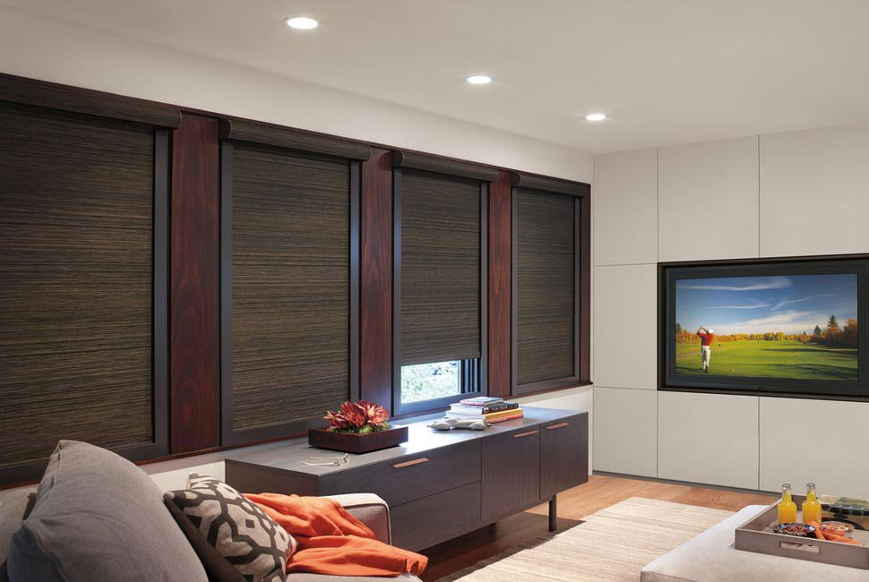 Modern TV/Lounge Room with dark brown custom window shades by Hunter Douglas